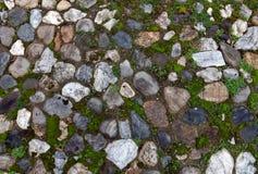 Gammal kullerstenbakgrund med gräs Arkivfoto