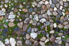 Gammal kullerstenbakgrund med gräs Royaltyfria Foton