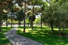 Gammal kullerstenvandringsled på en parkera Banan i en fridsam stad parkerar royaltyfria foton