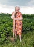Gammal kvinna med en skyffel Arkivfoto