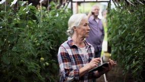 Gammal kvinna med minnestavlaPC i växthus på lantgård stock video