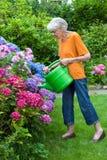 Gammal kvinna som bevattnar nätta blommor på trädgården Royaltyfria Bilder