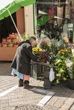 Gammal kvinna som deltar i hans resande position av blommor i bilen Fotografering för Bildbyråer