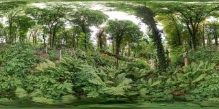 Gammal kyrkogård i sommar Kyrkogård med gröna trädgravvalv i skogen med gräs sfärisk panorama 3D med 360 grad som beskådar a Fotografering för Bildbyråer