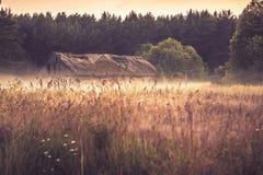 Gammal ladugård i dimmigt fält royaltyfria foton