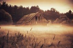 Gammal ladugård i dimmigt fält royaltyfria bilder