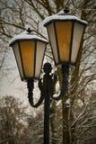Gammal lampa i parkera Arkivbild