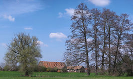 Gammal lantgård under träd Fotografering för Bildbyråer