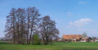 Gammal lantgård under träd Royaltyfria Bilder
