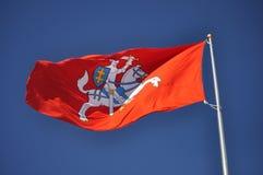 Gammal Litauen flagga Arkivfoton