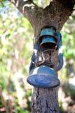 Gammal lyktahängning på träd arkivfoto