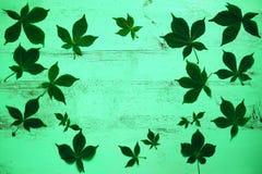 Gammal målad trätabell med gröna kastanjebruna sidor mot bakgrund field bl?a oklarheter f?r gr?n vitt wispy natursky f?r gr?s Top royaltyfri bild
