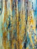Gammal målad wood texturgrunge Royaltyfria Bilder