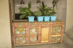 Gammal mångfärgad trätabell med dörrar och berömda växter som står på den i blåa krukor royaltyfri fotografi
