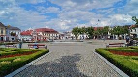 Gammal marknadsfyrkant och springbrunn i Lowicz, Polen Arkivfoton