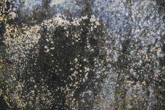 Gammal marmor två Royaltyfri Foto