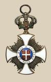 gammal medalj royaltyfri bild