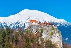 Gammal medeltida slott på vagga mot de snöig bergen Arkivfoton