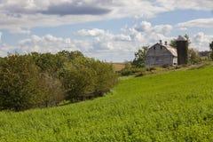 Gammal mejeriladugård och hayfield arkivbilder