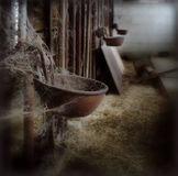 gammal mejerilantgård Royaltyfri Bild