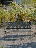 Gammal metallbänk som rostar på jordningen bland banhoppningkaktuns i den Arizona öknen i den öde spöken som bryter staden Royaltyfria Bilder