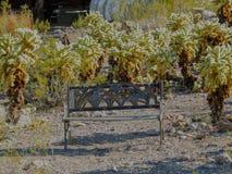 Gammal metallbänk som rostar på jordningen bland banhoppningkaktuns i den Arizona öknen i den öde spöken som bryter staden Royaltyfri Fotografi