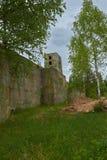 Gammal militär bunker i skog Royaltyfria Bilder