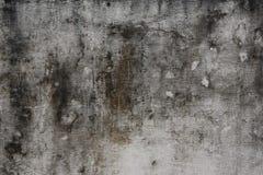 gammal modellvägg Arkivfoto