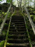 Gammal mossig trappa utomhus i träna arkivbild