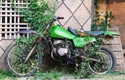 Gammal motorcykel med växterna Royaltyfria Bilder