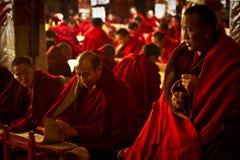 Gammal munk av den Drepung kloster Lhasa Tibet Royaltyfri Foto