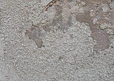 Gammal murbruk med sprickor, skrapor och att skada till betong royaltyfri foto