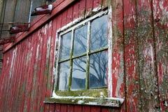 Gammal nära rött ladugård och fönster upp i Illinois Royaltyfri Foto