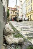 Gammal nallebjörn på trottoaren Arkivbild
