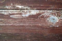 Gammal naturlig trädbakgrund arkivfoto