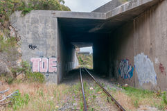 Gammal oanvänd roalroad i Sir Lowrys Pass Fotografering för Bildbyråer