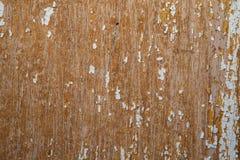 Gammal och skalad knarrande målarfärg, i kurs av tid den vita signalen av plankorna knastrade, wood textur, bakgrund Royaltyfri Fotografi