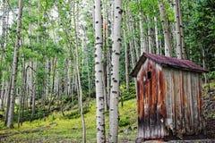 Gammal Outhouse i asp- skog Royaltyfria Foton