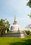 Gammal pagod Arkivfoton