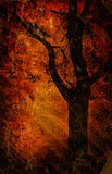 gammal paper silhouettetree Arkivfoton