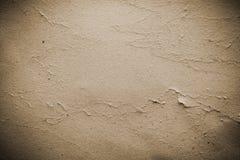 Gammal pappers- textur med buse och med korn Arkivbilder
