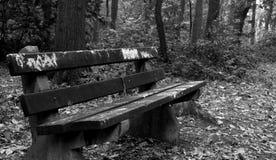 gammal park för bänk Arkivbild