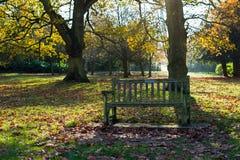 gammal park för bänk Royaltyfri Bild