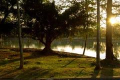 gammal park för bronze möblemanglake Arkivfoton