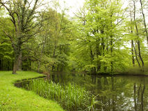 gammal park för lake Arkivfoto