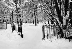 Gammal park i vinter Royaltyfria Foton