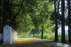 gammal park Velikiy Novgorod Sommar royaltyfri fotografi