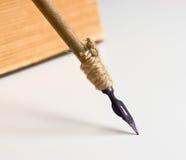 gammal penna Arkivbilder