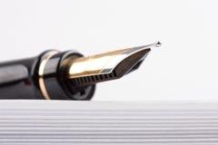 gammal penna för springbrunn Royaltyfria Foton