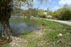 Gammal pil på kusten av dammet i Abrau-Durso Royaltyfri Fotografi
